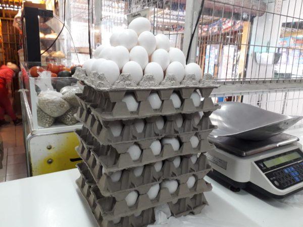 Caja de Huevos Extra de 5 Bandejas